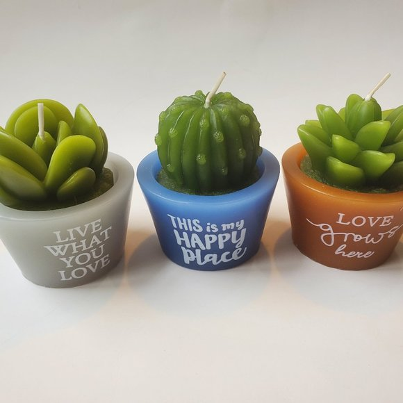 Succulent Cactus Shaped Candles, set of 3
